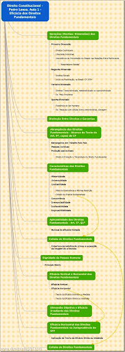 Curso de Direito Constitucional. Esquema da Aula 01. Direitos Fundamentais. Pedro Lenza.